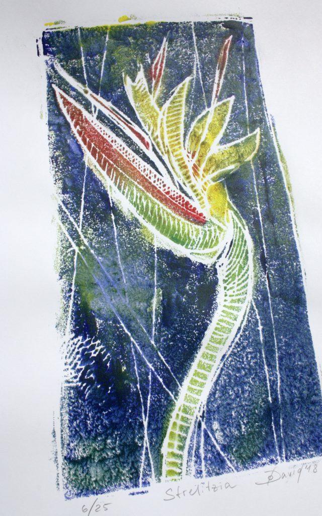 Strelitzia, Monotypie Styropordruck