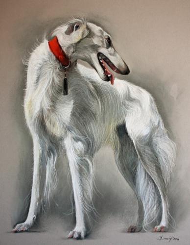 Hundenporträt Pastell auf Karton